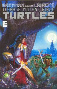Teenage Mutant Ninja Turtles #13 (1984)