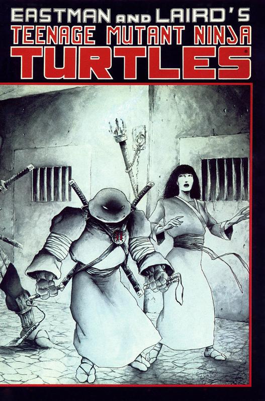 Teenage Mutant Ninja Turtles #17 (1984)