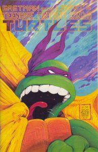 Teenage Mutant Ninja Turtles #22 (1989)