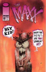 The Maxx #12 (1994)