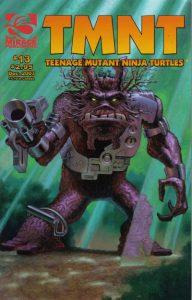 TMNT: Teenage Mutant Ninja Turtles #13 (2001)