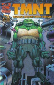 TMNT: Teenage Mutant Ninja Turtles #14 (2001)