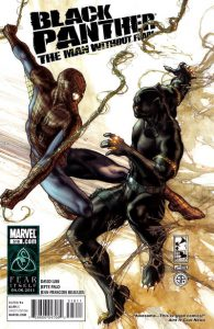 Black Panther: The Man Without Fear #516 (2011)