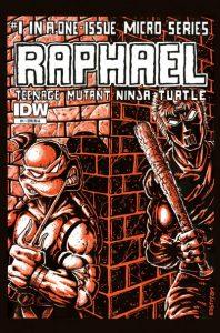 Teenage Mutant Ninja Turtles Microseries #1 (2011)