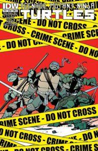 Teenage Mutant Ninja Turtles #15 (2012)