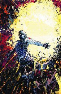 Winter Soldier #19 (2013)